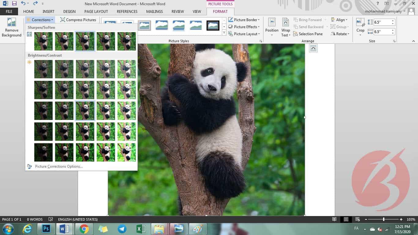 مرحله سیزدهم آموزش قرار دادن عکس در ورد