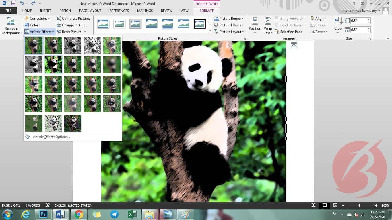 مرحله پانزدهم آموزش قرار دادن عکس در ورد