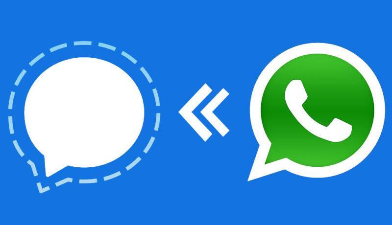 انتقال اطلاعات واتس اپ به سیگنال - وب سایت برتر رایانه